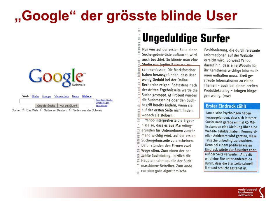 4 Google der grösste blinde User