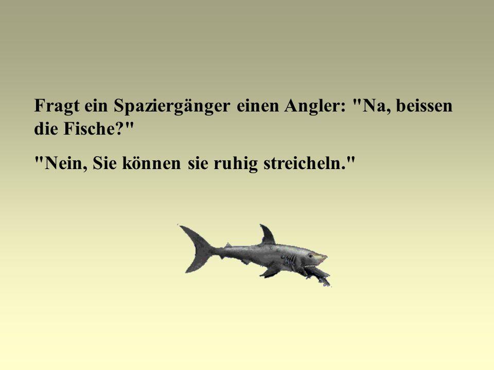 Fragt ein Spaziergänger einen Angler: