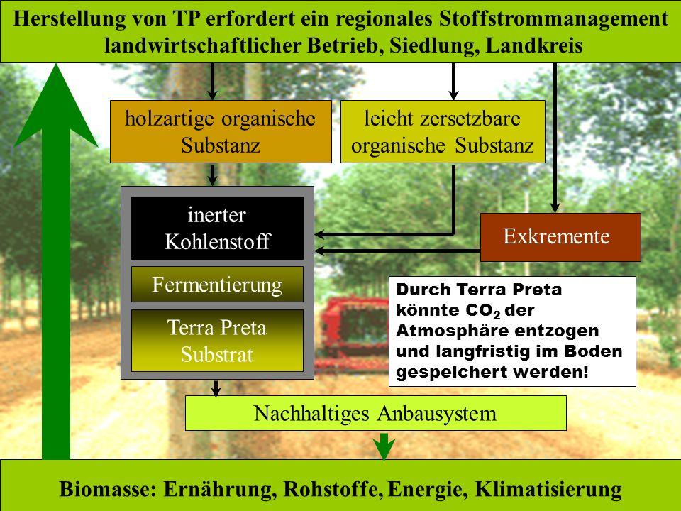 leicht zersetzbare organische Substanz holzartige organische Substanz inerter Kohlenstoff Herstellung von TP erfordert ein regionales Stoffstrommanage