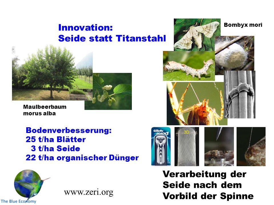 Maulbeerbaum morus alba Verarbeitung der Seide nach dem Vorbild der Spinne Bodenverbesserung: 25 t/ha Blätter 3 t/ha Seide 22 t/ha organischer Dünger