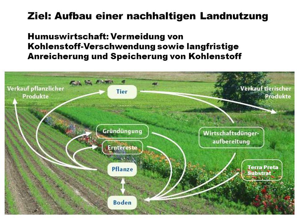 Ziel: Aufbau einer nachhaltigen Landnutzung Humuswirtschaft: Vermeidung von Kohlenstoff-Verschwendung sowie langfristige Anreicherung und Speicherung
