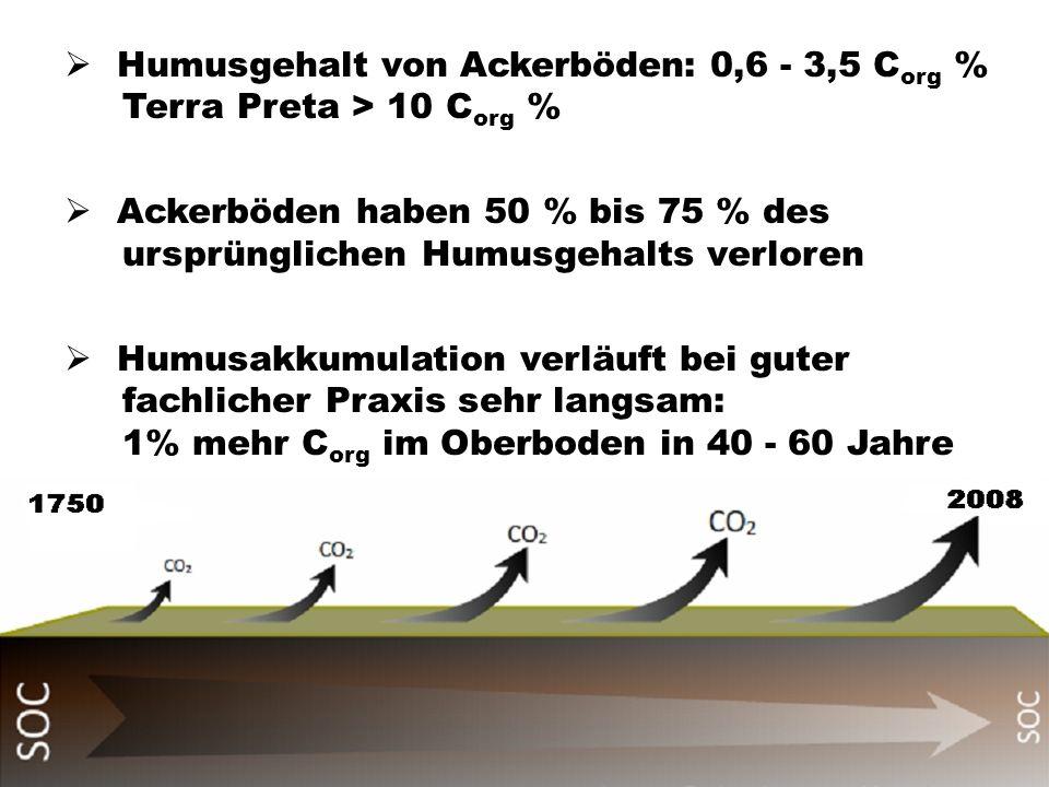 Humusgehalt von Ackerböden: 0,6 - 3,5 C org % Terra Preta > 10 C org % Ackerböden haben 50 % bis 75 % des ursprünglichen Humusgehalts verloren Humusak
