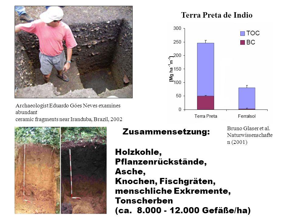 Terra Preta de Indio Bruno Glaser et al. Naturwissenschafte n (2001) Zusammensetzung: Holzkohle, Pflanzenrückstände, Asche, Knochen, Fischgräten, mens