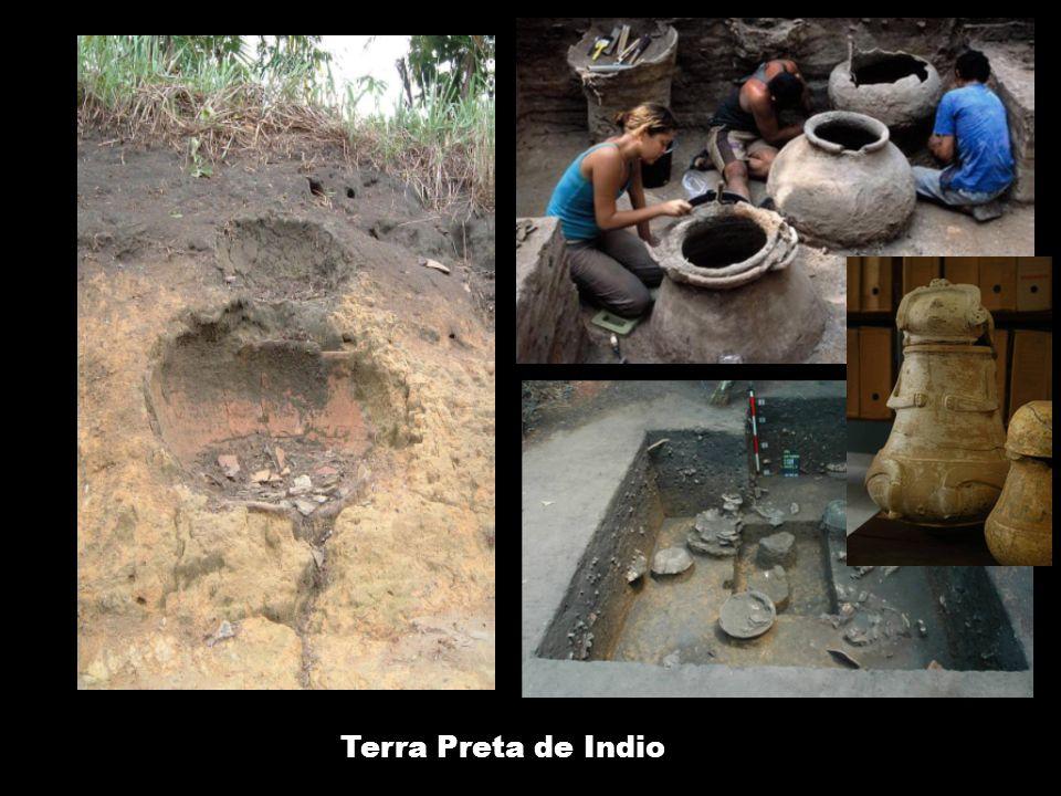 Schmidt, Heckenberger, 2009 Terra Preta de Indio: geniales Abfall- und Boden- management zur Verwertung von Haus- und Siedlungsabfällen