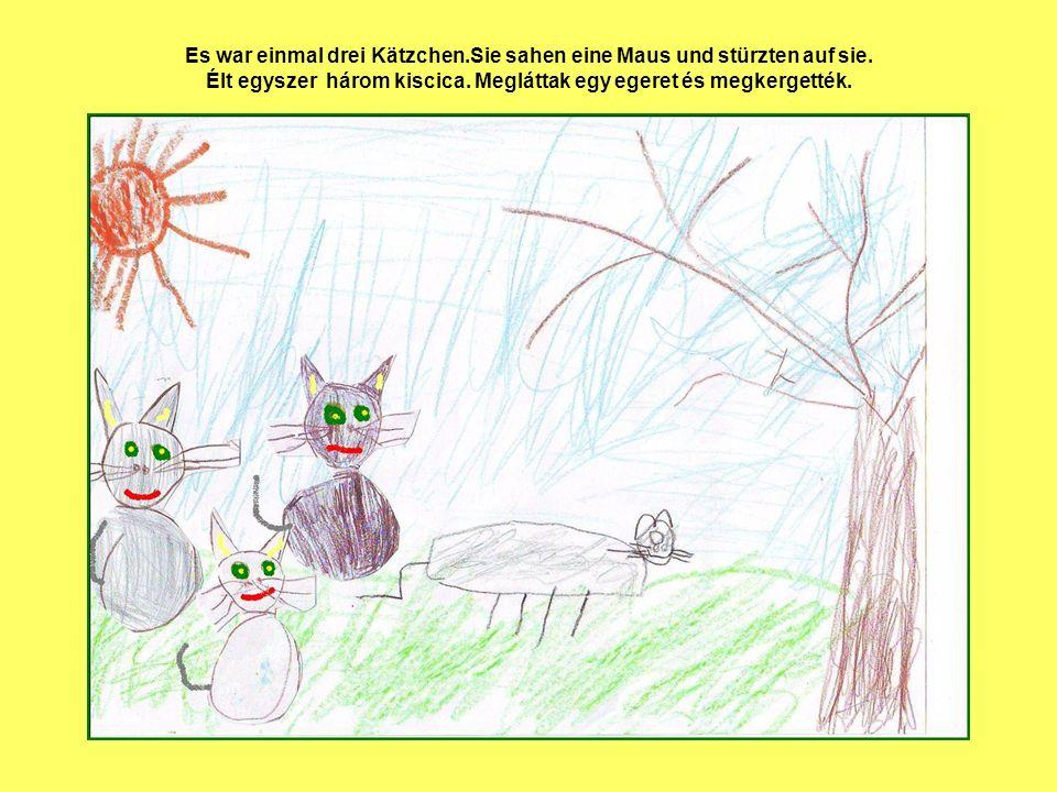 Es war einmal drei Kätzchen.Sie sahen eine Maus und stürzten auf sie. Élt egyszer három kiscica. Megláttak egy egeret és megkergették.