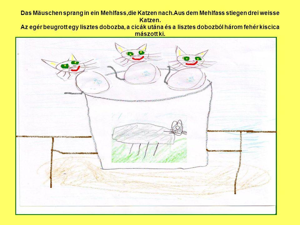 Das Mäuschen sprang in ein Mehlfass,die Katzen nach.Aus dem Mehlfass stiegen drei weisse Katzen. Az egér beugrott egy lisztes dobozba, a cicák utána é