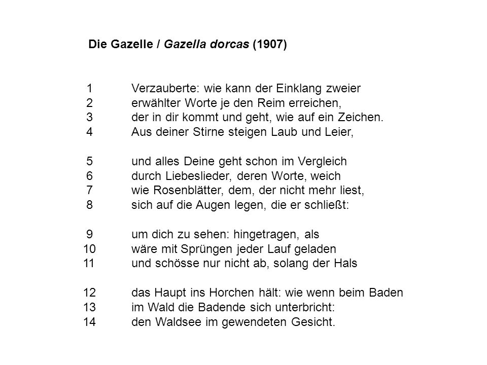 Die Gazelle / Gazella dorcas (1907) 1Verzauberte: wie kann der Einklang zweier 2erwählter Worte je den Reim erreichen, 3der in dir kommt und geht, wie auf ein Zeichen.