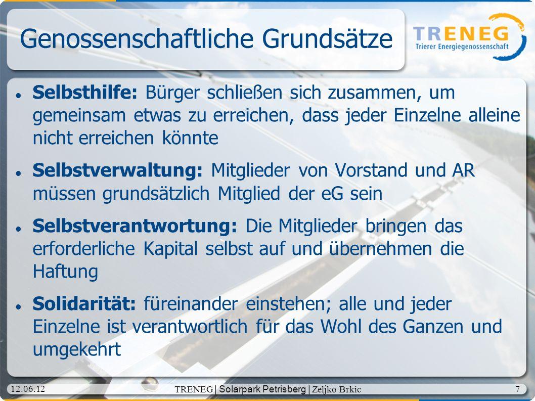 18 12.06.12 TRENEG | Solarpark Petrisberg | Zeljko Brkic InitiatorInnen der TRENEG 15.09.2011 Gründungsversammlung