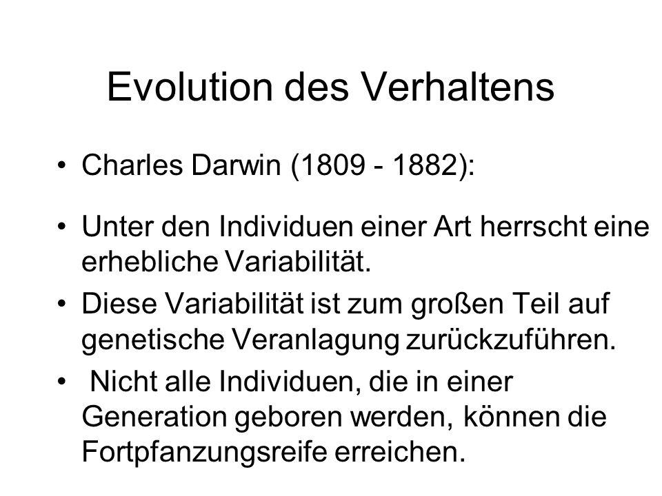 Evolution des Verhaltens Charles Darwin (1809 - 1882): Unter den Individuen einer Art herrscht eine erhebliche Variabilität. Diese Variabilität ist zu