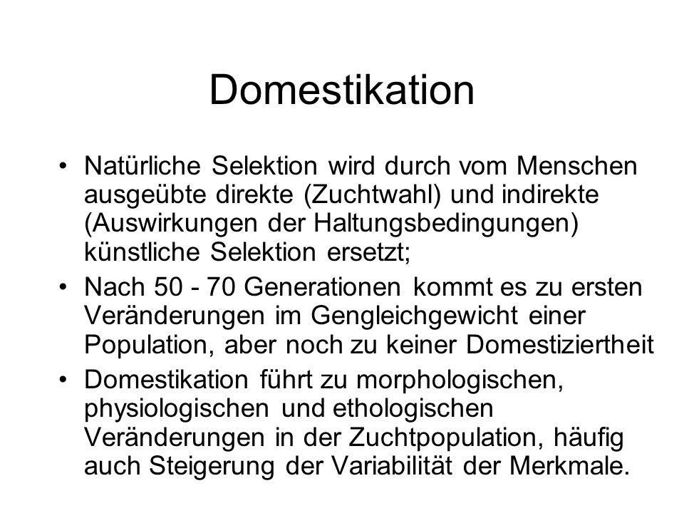 Domestikation Natürliche Selektion wird durch vom Menschen ausgeübte direkte (Zuchtwahl) und indirekte (Auswirkungen der Haltungsbedingungen) künstlic