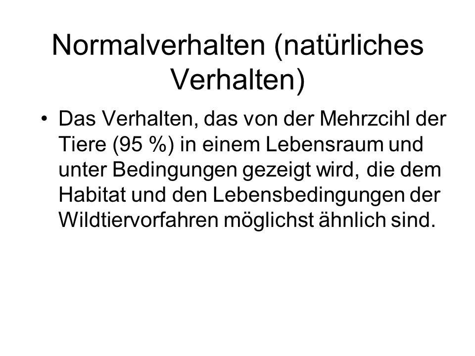Normalverhalten (natürliches Verhalten) Das Verhalten, das von der Mehrzcihl der Tiere (95 %) in einem Lebensraum und unter Bedingungen gezeigt wird,