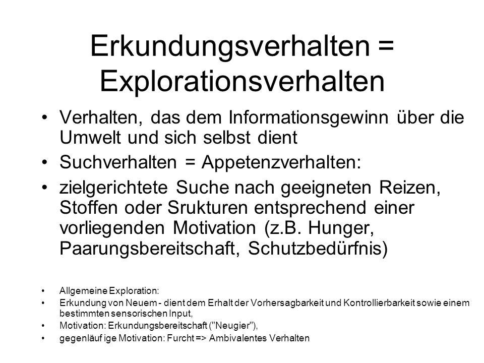 Erkundungsverhalten = Explorationsverhalten Verhalten, das dem Informationsgewinn über die Umwelt und sich selbst dient Suchverhalten = Appetenzverhal