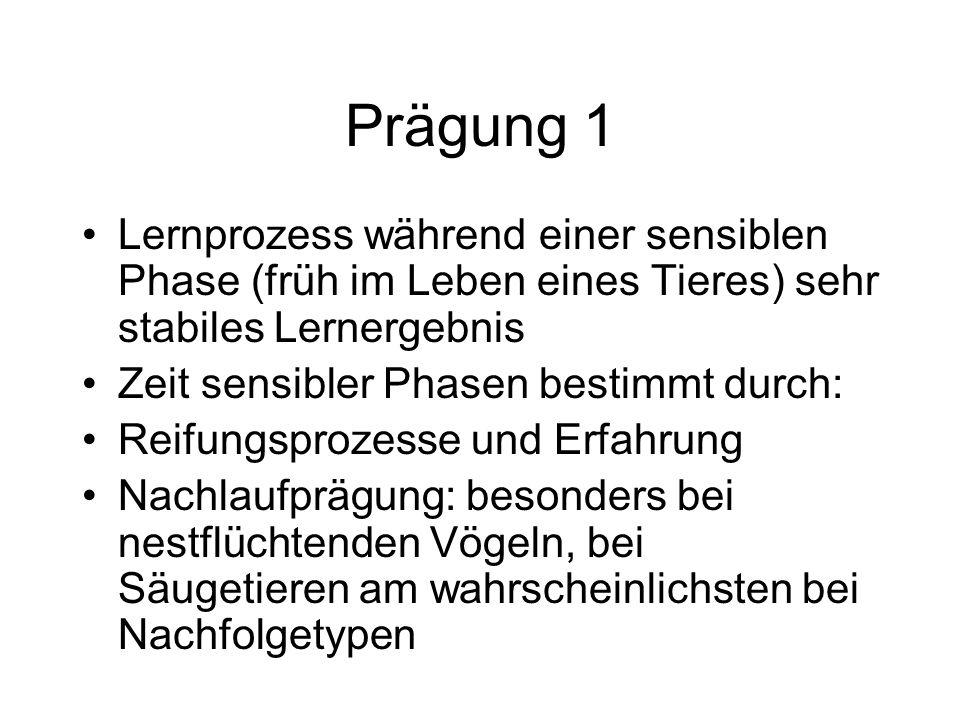 Funktionskreise das Verhaltens Fortpflanzungs- (inkl.