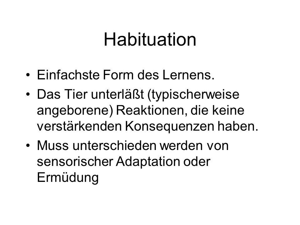 Habituation Einfachste Form des Lernens. Das Tier unterläßt (typischerweise angeborene) Reaktionen, die keine verstärkenden Konsequenzen haben. Muss u