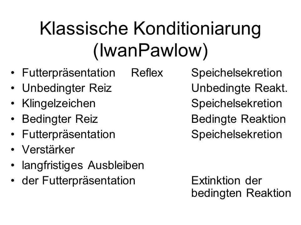Klassische Konditioniarung (IwanPawlow) Futterpräsentation Reflex Speichelsekretion Unbedingter ReizUnbedingte Reakt. Klingelzeichen Speichelsekretion
