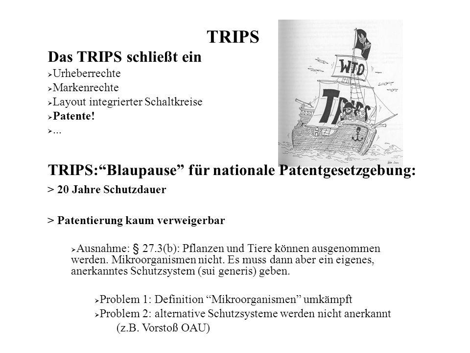 TRIPS Das TRIPS schließt ein Urheberrechte Markenrechte Layout integrierter Schaltkreise Patente!...