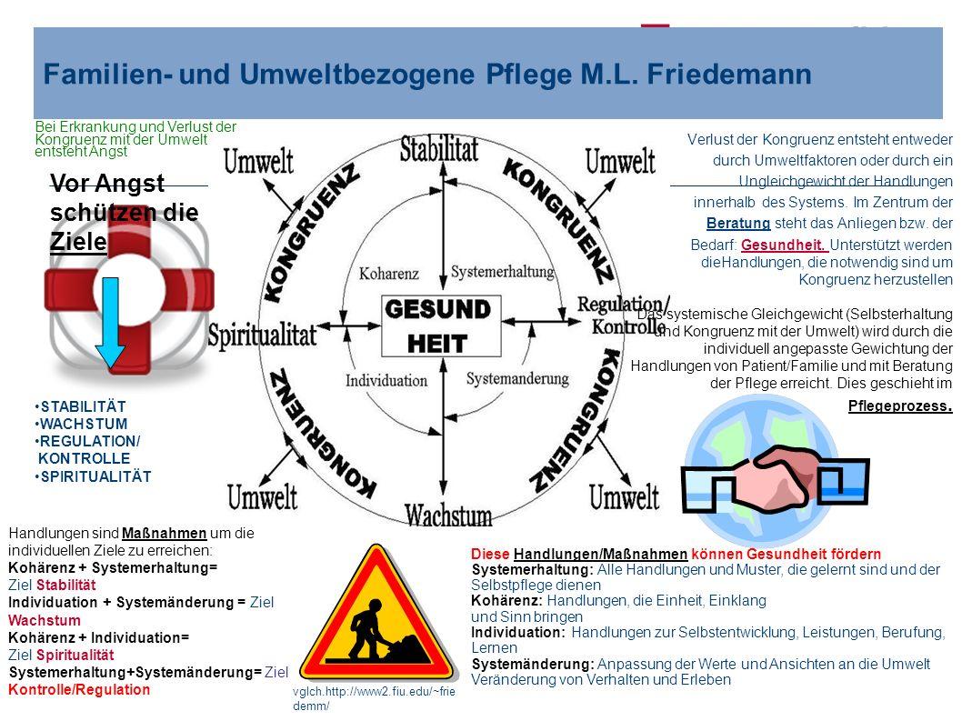 Ressort Pflegevorstand Familien- und Umweltbezogene Pflege M.L. Friedemann STABILITÄT WACHSTUM REGULATION/ KONTROLLE SPIRITUALITÄT Vor Angst schützen
