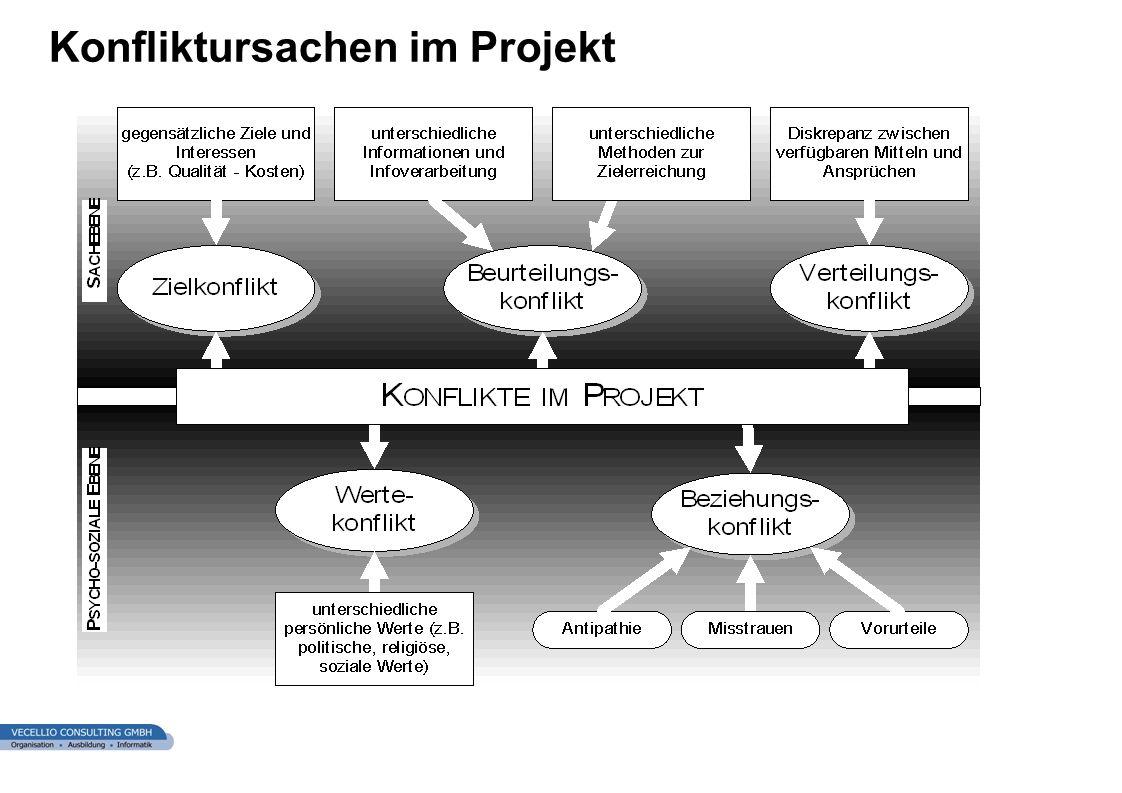 wwgs1.ch Konfliktursachen im Projekt