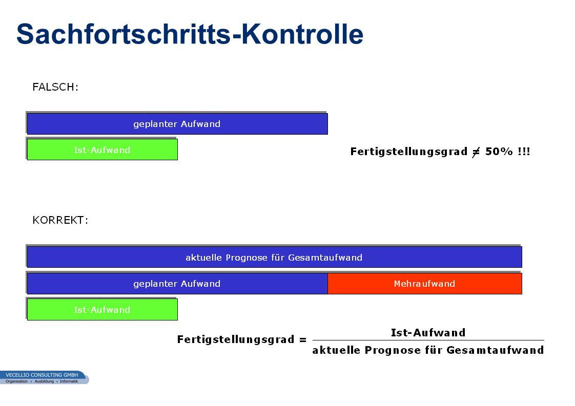 wwgs1.ch Sachfortschritts-Kontrolle
