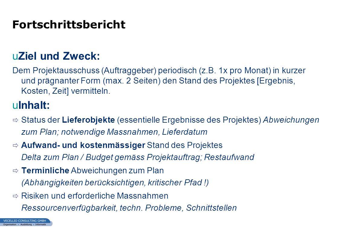 wwgs1.ch uZiel und Zweck: Dem Projektausschuss (Auftraggeber) periodisch (z.B. 1x pro Monat) in kurzer und prägnanter Form (max. 2 Seiten) den Stand d