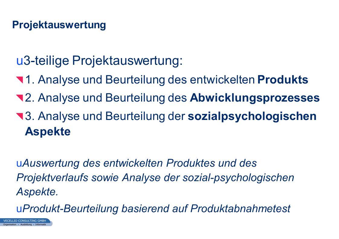 wwgs1.ch u3-teilige Projektauswertung: 1. Analyse und Beurteilung des entwickelten Produkts 2. Analyse und Beurteilung des Abwicklungsprozesses 3. Ana