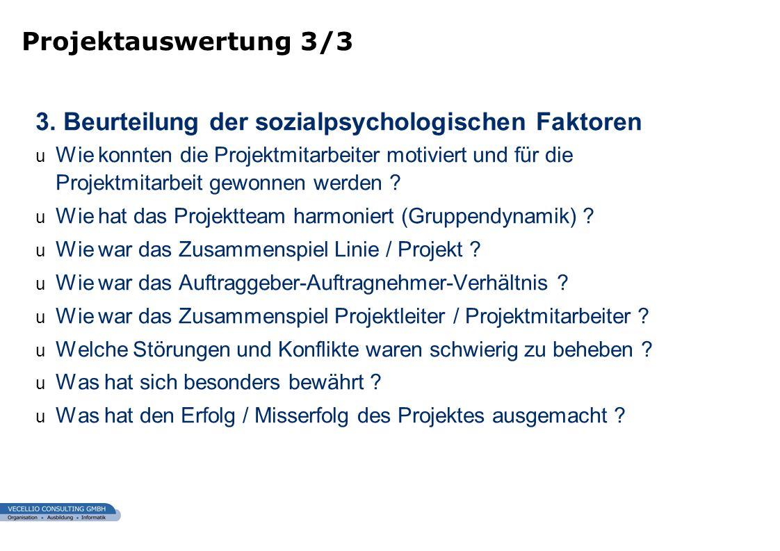 wwgs1.ch 3. Beurteilung der sozialpsychologischen Faktoren u Wie konnten die Projektmitarbeiter motiviert und für die Projektmitarbeit gewonnen werden
