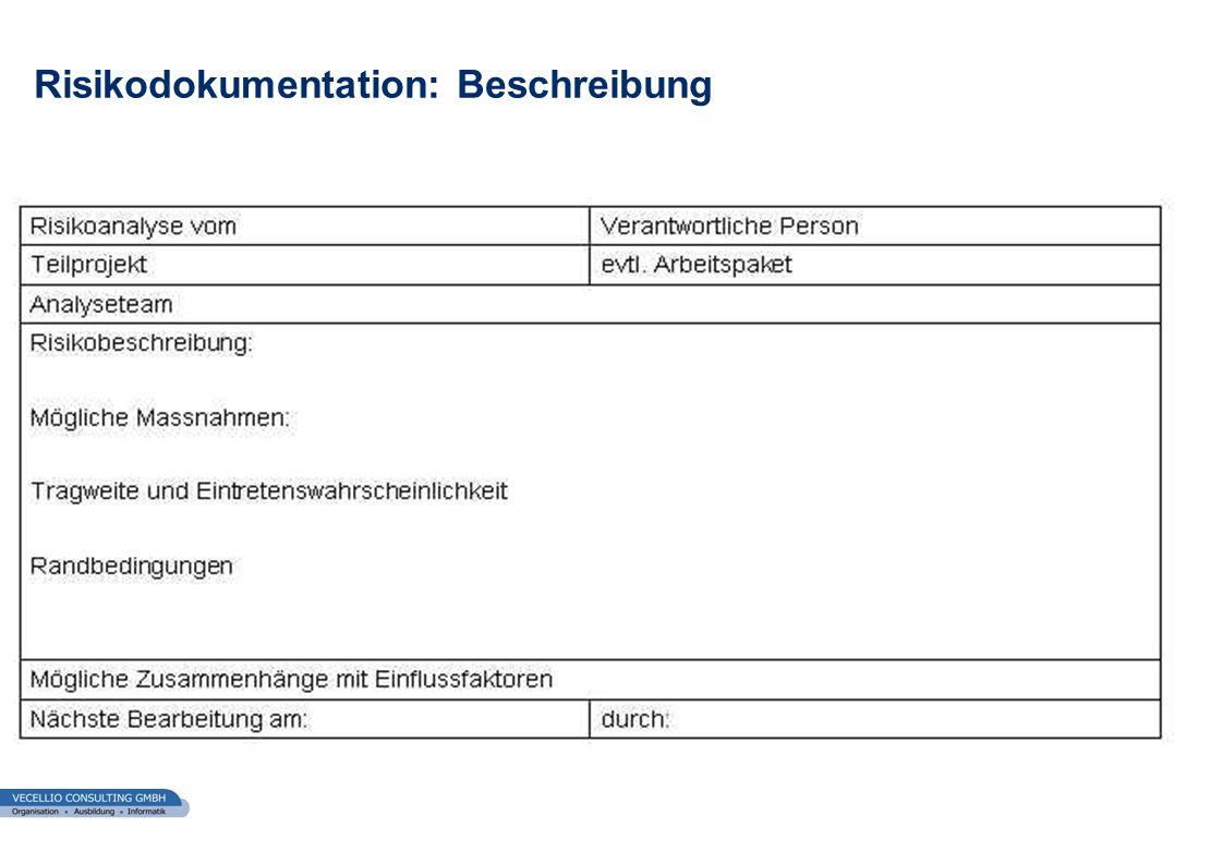 wwgs1.ch Risikodokumentation: Beschreibung