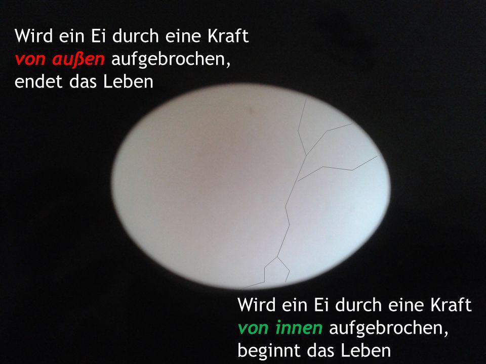 Wird ein Ei durch eine Kraft von außen aufgebrochen, endet das Leben Wird ein Ei durch eine Kraft von innen aufgebrochen, beginnt das Leben