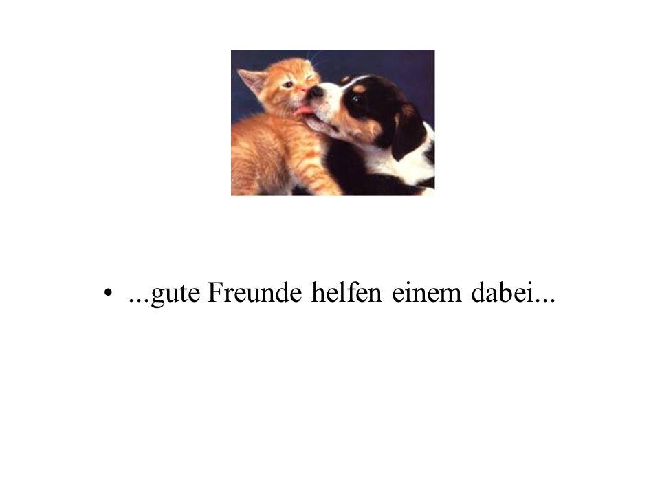...gute Freunde helfen einem dabei...