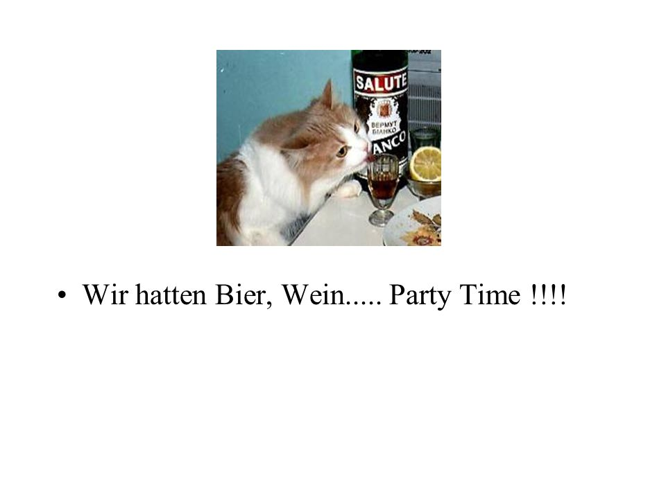 Wir hatten Bier, Wein..... Party Time !!!!