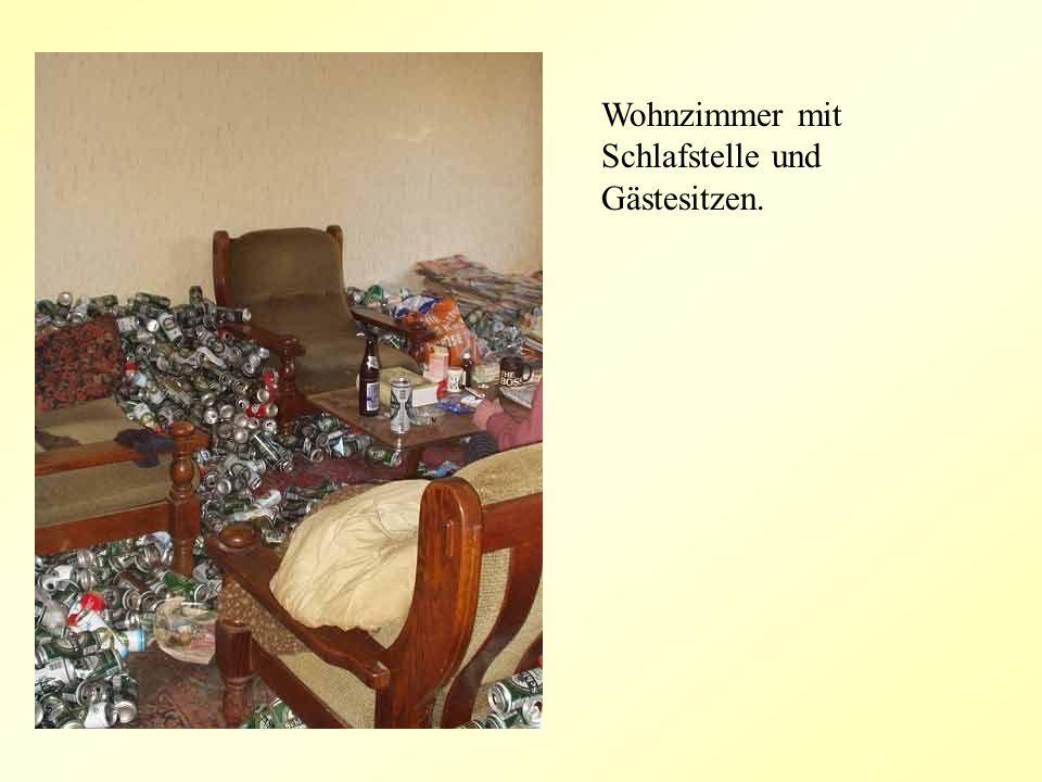 Wohnzimmer mit Schlafstelle und Gästesitzen.
