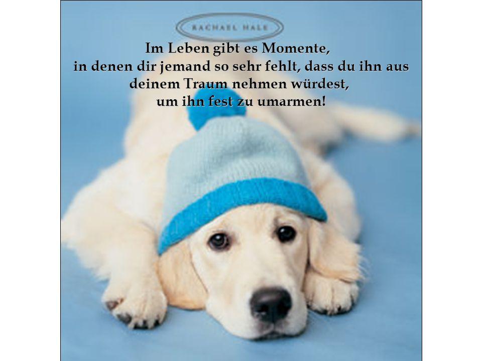 Im Leben gibt es Momente, in denen dir jemand so sehr fehlt, dass du ihn aus deinem Traum nehmen würdest, um ihn fest zu umarmen!