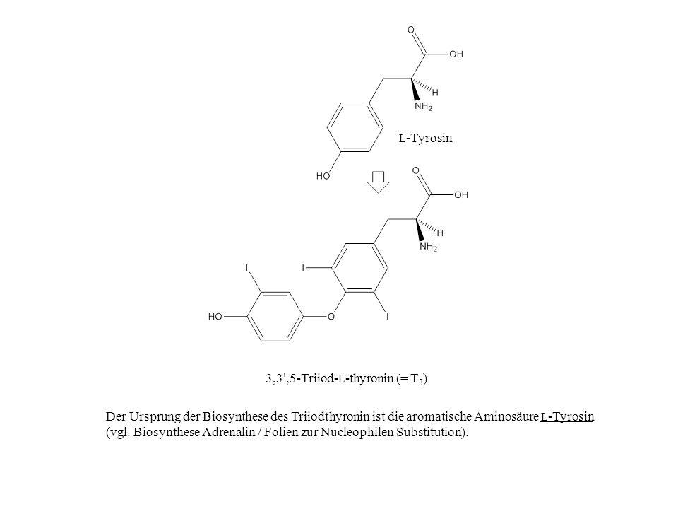 3,3 ',5-Triiod- L -thyronin (= T 3 ) Der Ursprung der Biosynthese des Triiodthyronin ist die aromatische Aminosäure L -Tyrosin (vgl. Biosynthese Adren