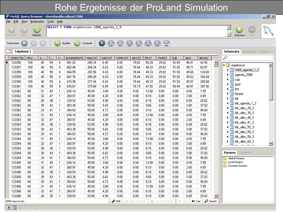 Rohe Ergebnisse der ProLand Simulation