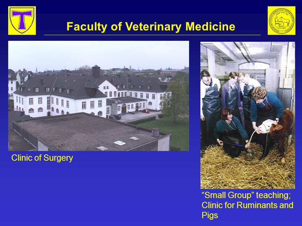 Faculty of Veterinary Medicine Clinic of Surgery Small Group teaching; Clinic for Ruminants and Pigs