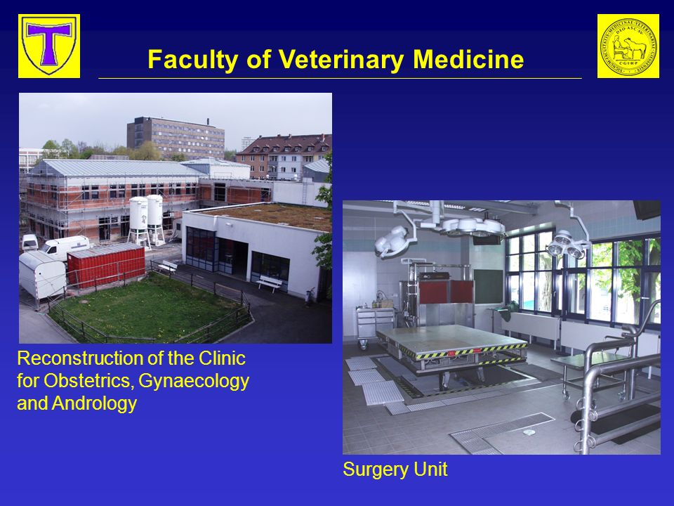 Faculty of Veterinary Medicine Reconstruction of the Clinic for Obstetrics, Gynaecology and Andrology Surgery Unit