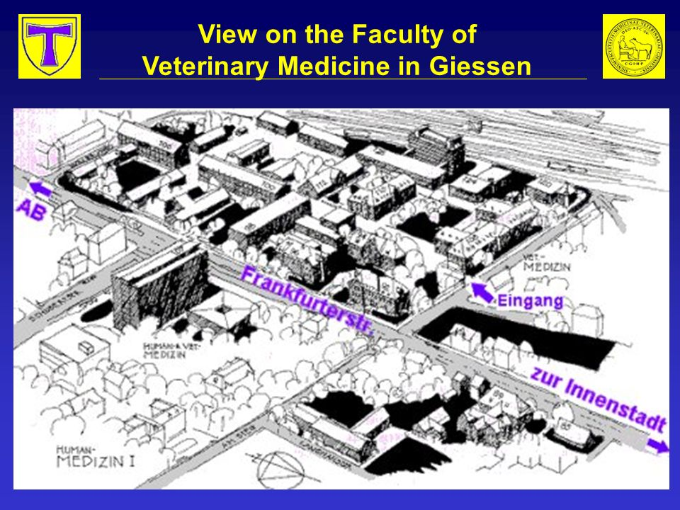 Faculty of Veterinary Medicine Institute of Food Science Instruction on food production and hygiene