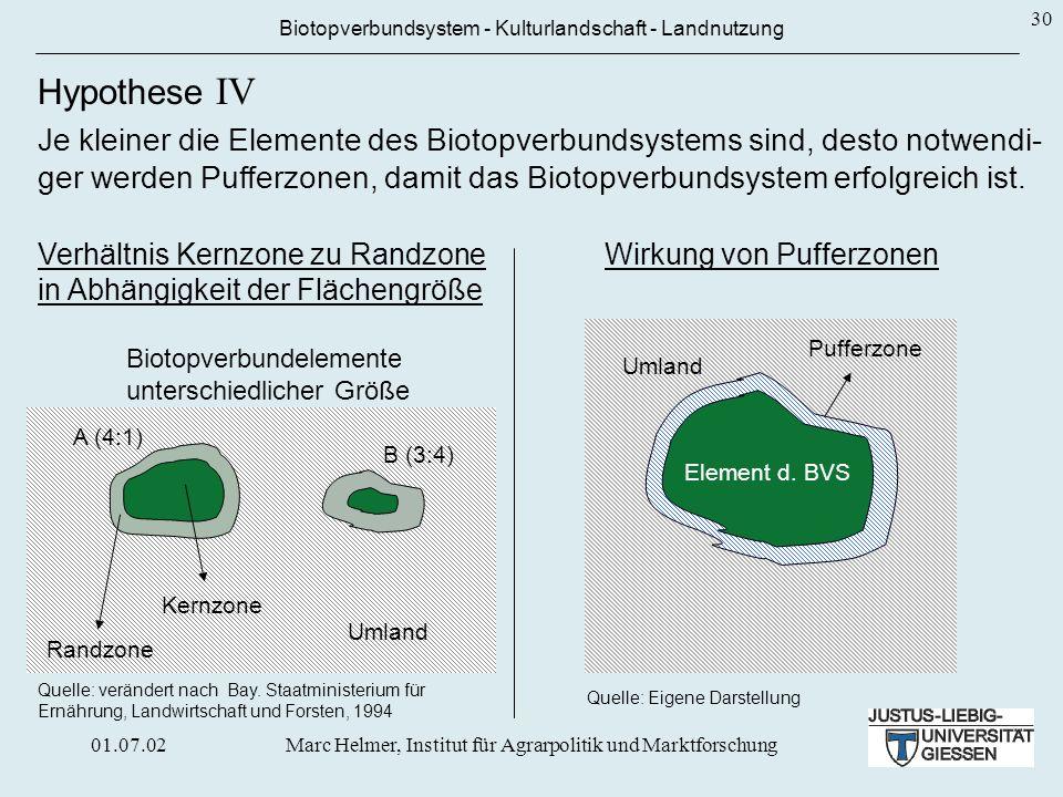01.07.02Marc Helmer, Institut für Agrarpolitik und Marktforschung 30 Umland Quelle: Eigene Darstellung Wirkung von Pufferzonen Pufferzone Biotopverbun