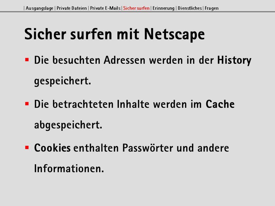 Einstellungen bei Netscape 4.7x Mit Bearbeiten Einstellungen können Sie sicherheitsrelevante Optionen wählen.
