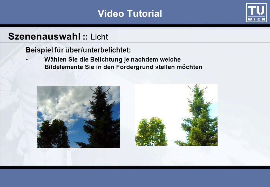 Video Tutorial Beispiel für über/unterbelichtet: Wählen Sie die Belichtung je nachdem welche Bildelemente Sie in den Fordergrund stellen möchten Szenenauswahl :: Licht