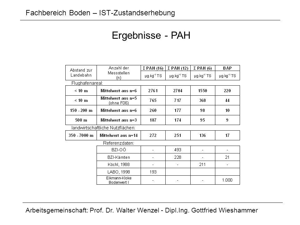 Fachbereich Boden – IST-Zustandserhebung Arbeitsgemeinschaft: Prof. Dr. Walter Wenzel - Dipl.Ing. Gottfried Wieshammer Ergebnisse - PAH