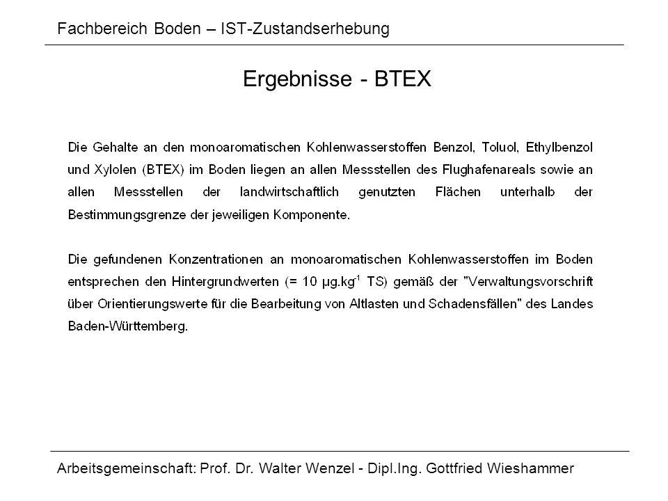Fachbereich Boden – IST-Zustandserhebung Arbeitsgemeinschaft: Prof. Dr. Walter Wenzel - Dipl.Ing. Gottfried Wieshammer Ergebnisse - BTEX