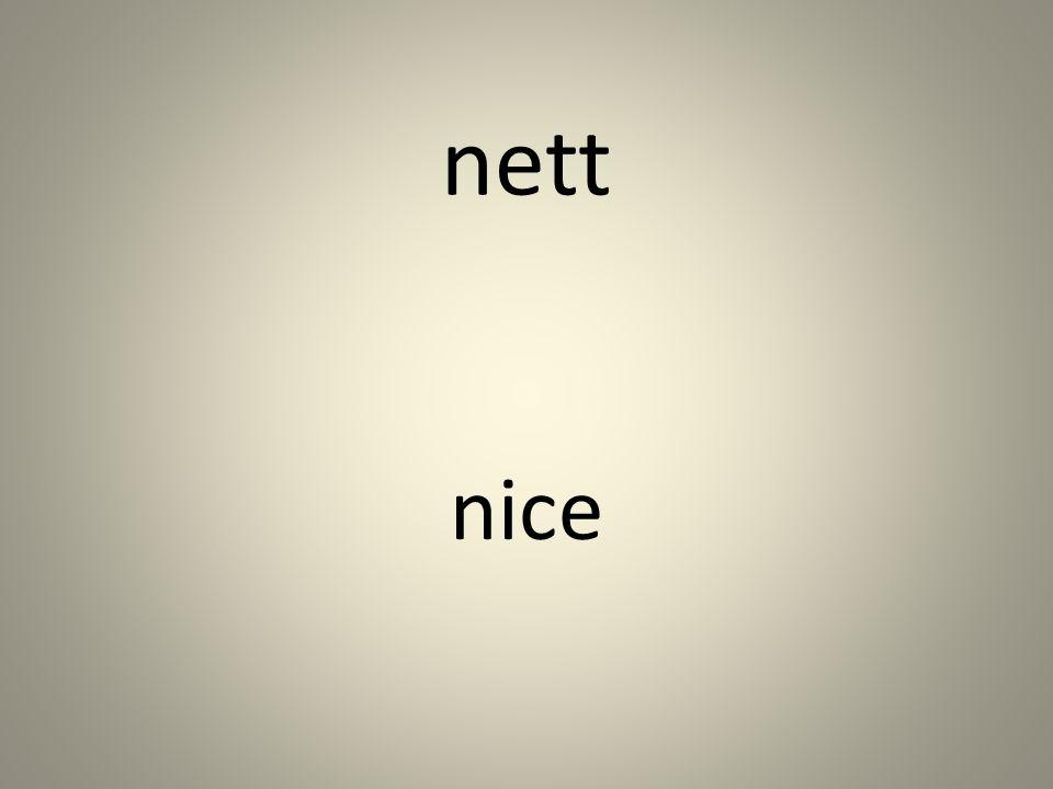 nett nice