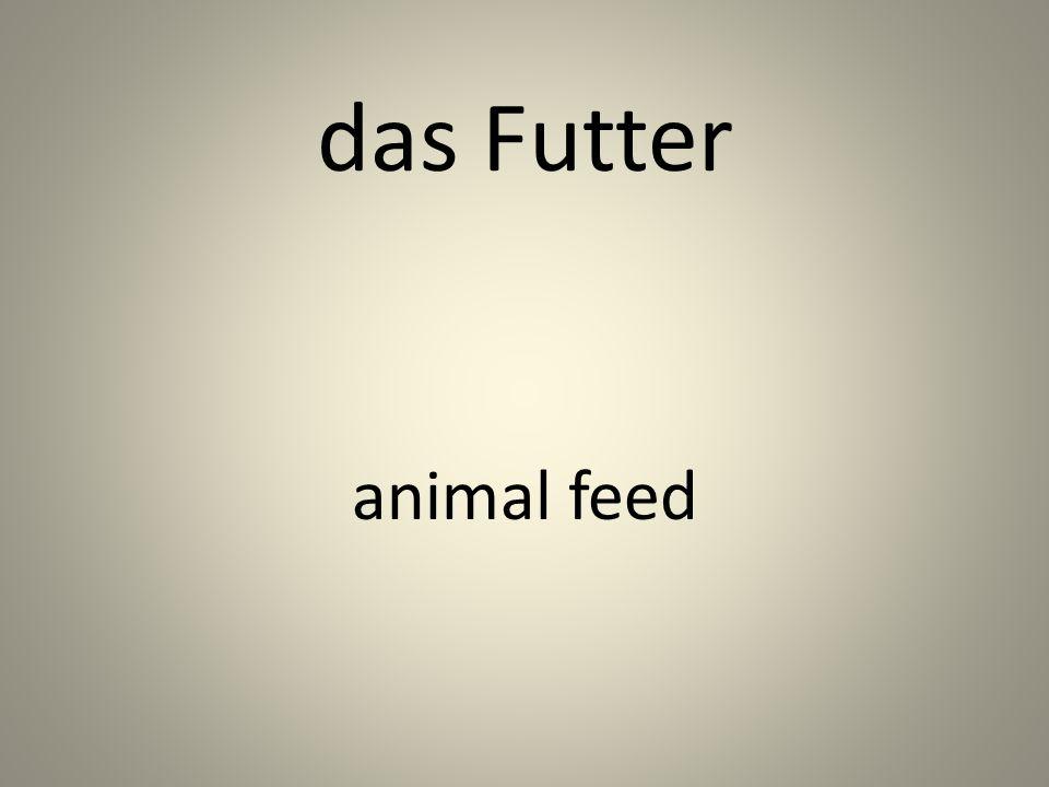 das Futter animal feed