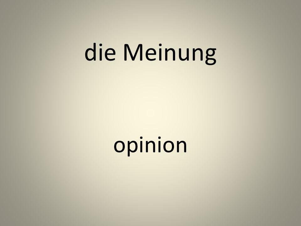 die Meinung opinion