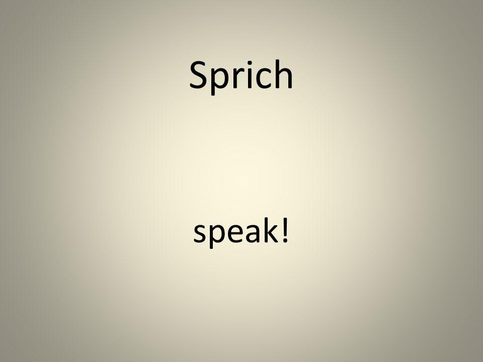 Sprich speak!