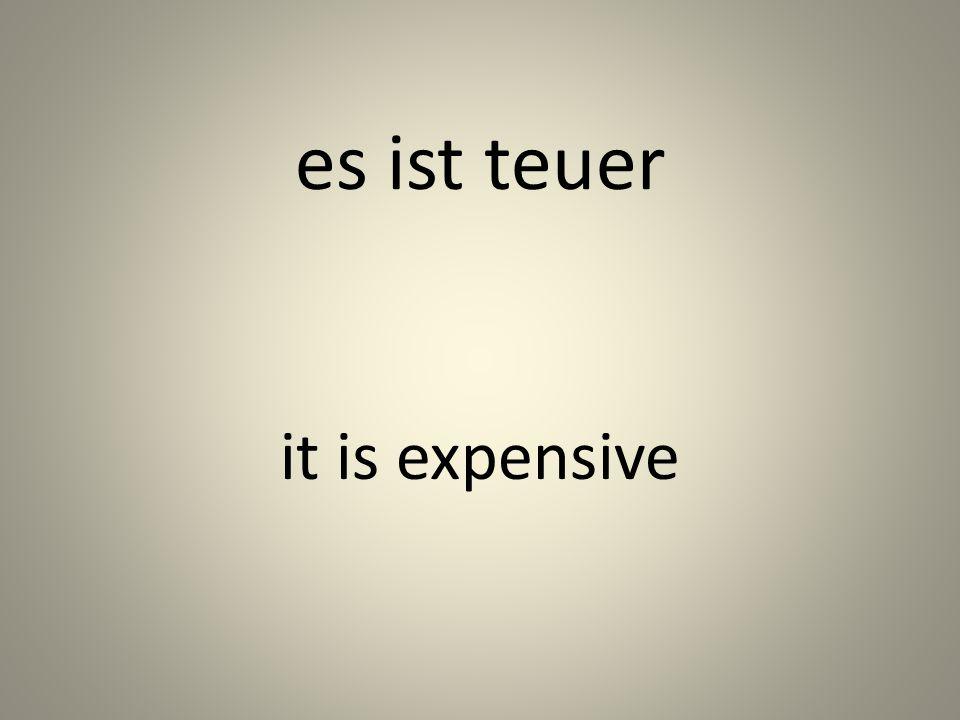 es ist teuer it is expensive
