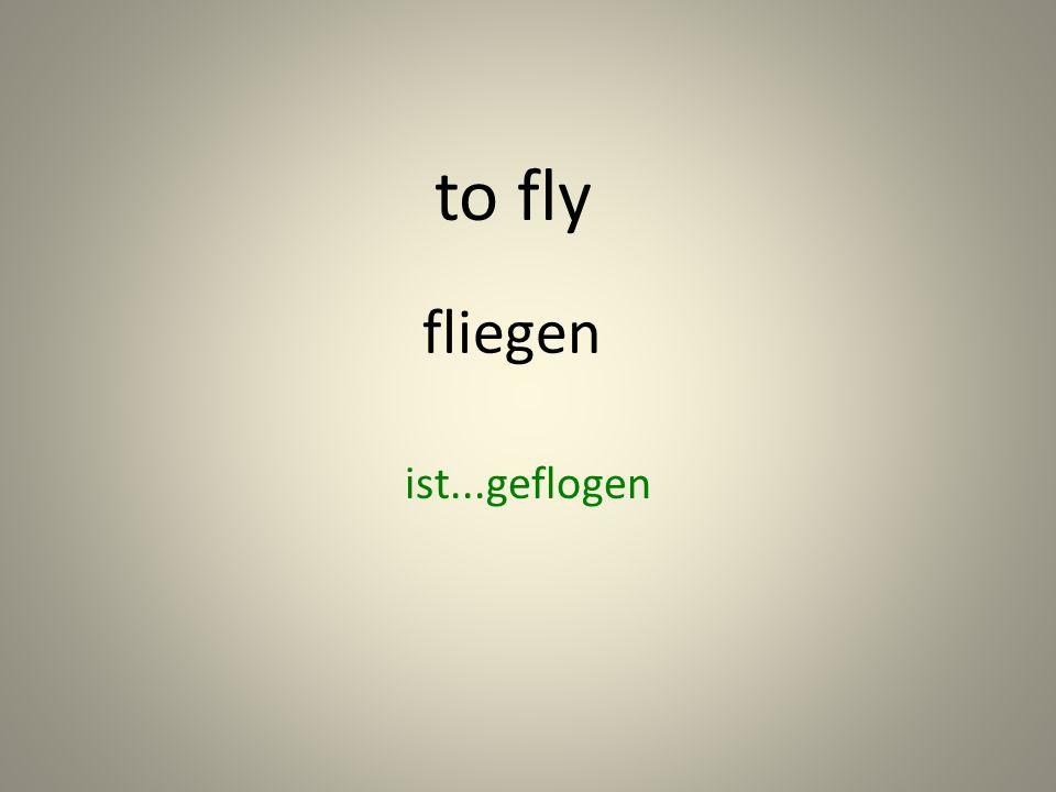 fliegen ist...geflogen to fly