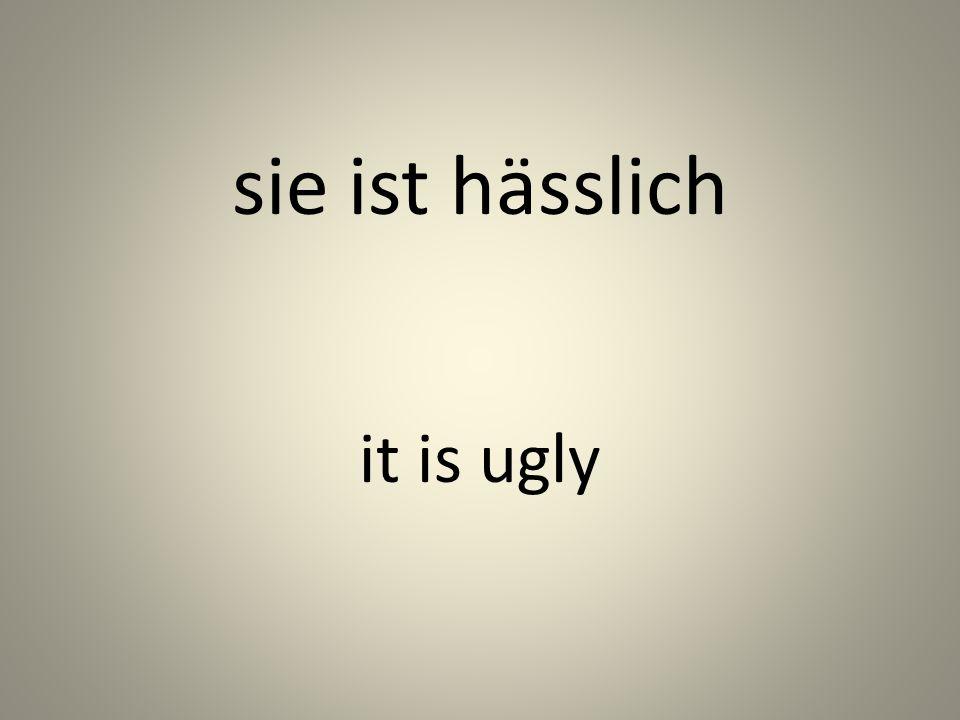 sie ist hässlich it is ugly
