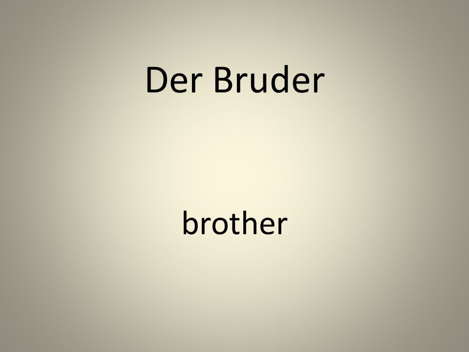 Der Bruder brother